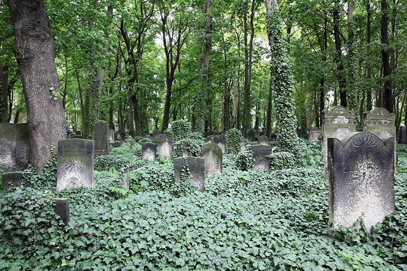Jüdischer Friedhof Schönhauser Allee - Berlijn