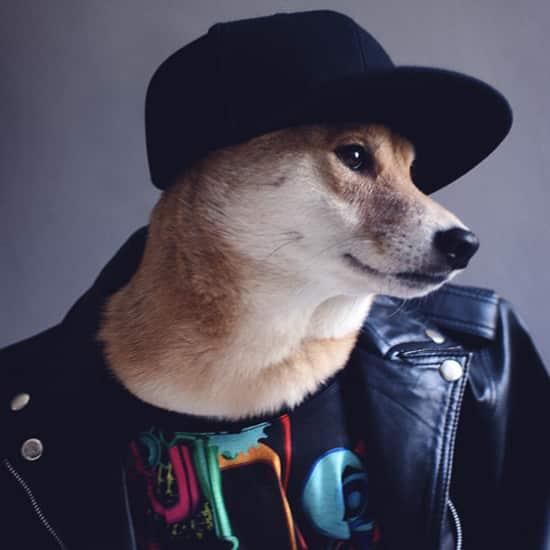 Modeblogs voor mannen - Menswear Dog