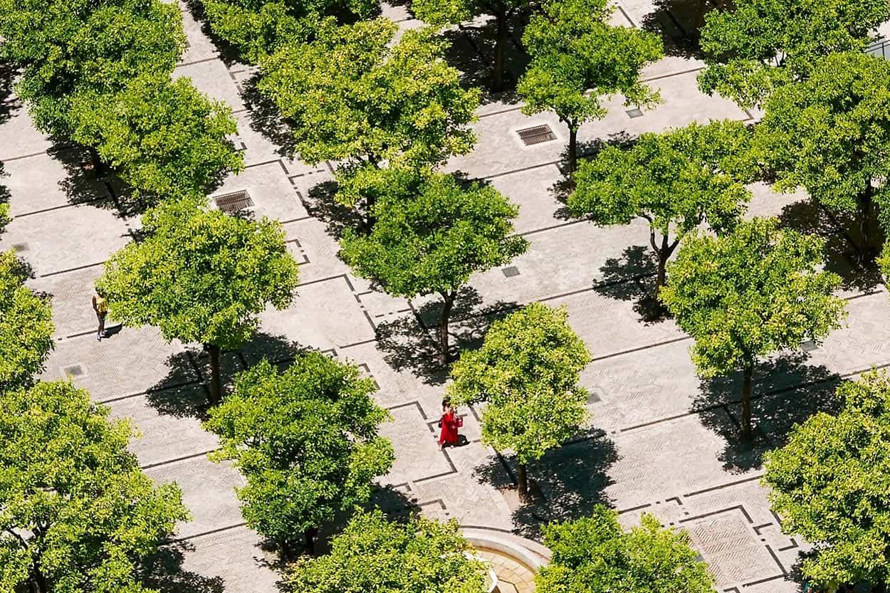 Citytrip Sevilla: 9 bezienswaardigheden die je niet mag missen!